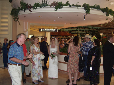 The Wedding for the Ohanlond Only