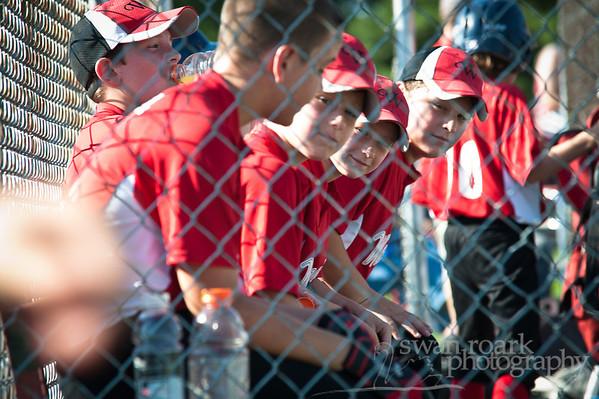 wanatah baseball 2011