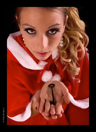 Christmas Promise