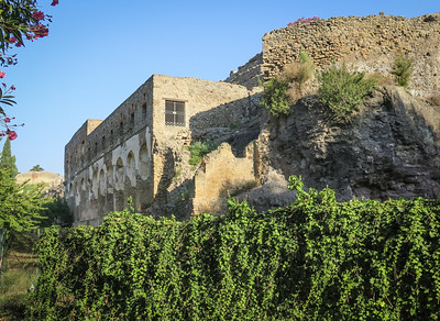 Mediterranean6 Pompeii, Italy 2014