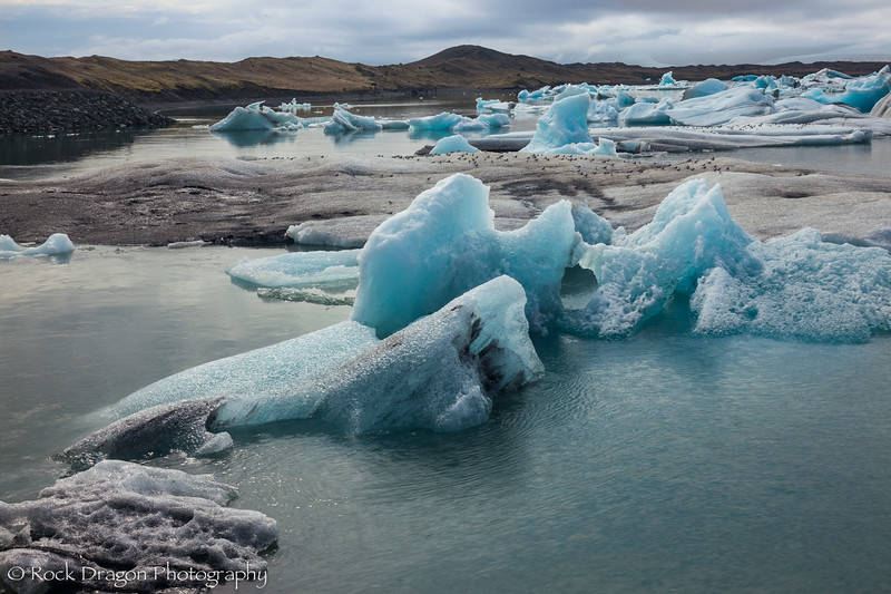 iceland_south-71.jpg
