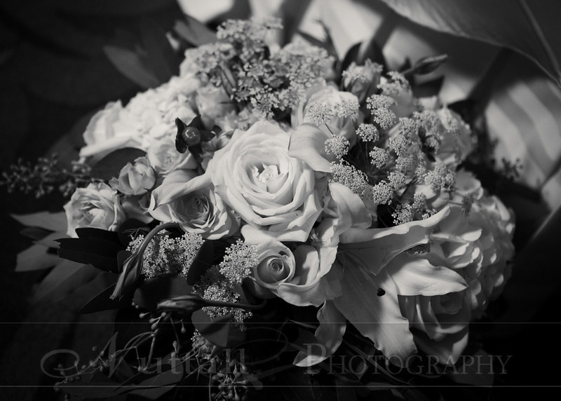 Lester Wedding 231bw.jpg