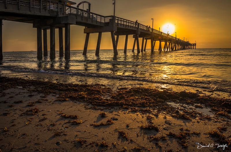 Dania Beach Pier #4 V2.jpg
