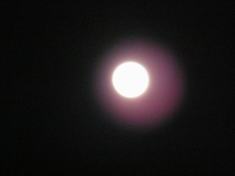 Moonlit Fire, Stonehedge Garden, South Tamaqua, 2-28-2010 (18).JPG
