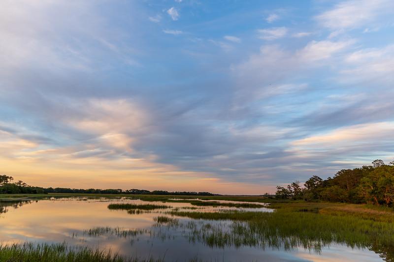 Edisto island marsh land