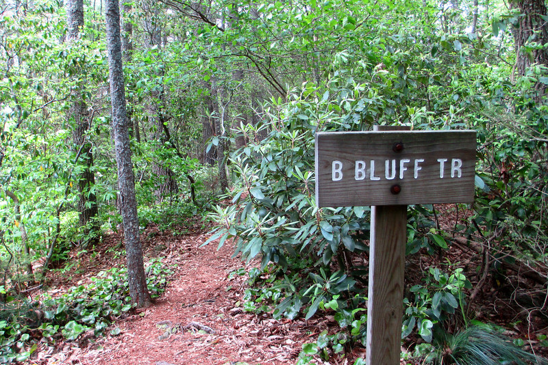Linville Gorge-Bynum Bluff Trail Junction