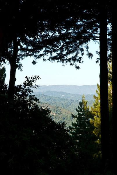 California-73.jpg