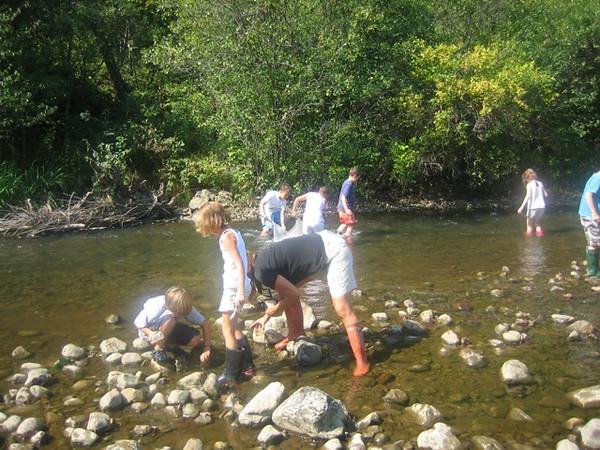 3rd Grade River Studies