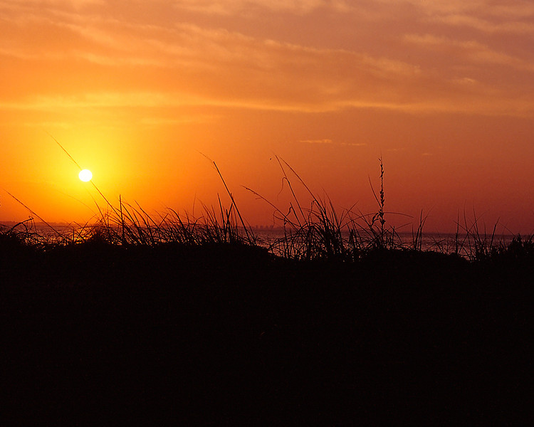 Costal-Sunrise.jpg