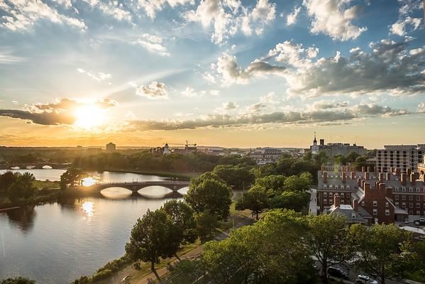 Harvard Summer