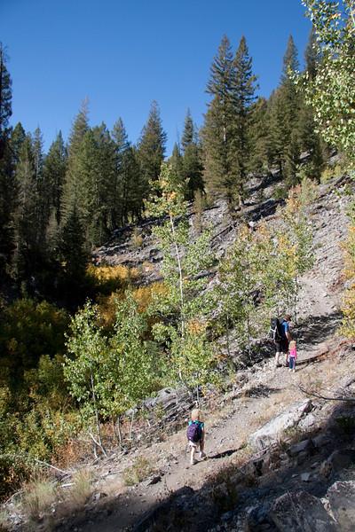 A pretty gorge along the Prairie Creek trail.