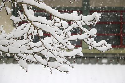 Campus in Snow 2-25-21