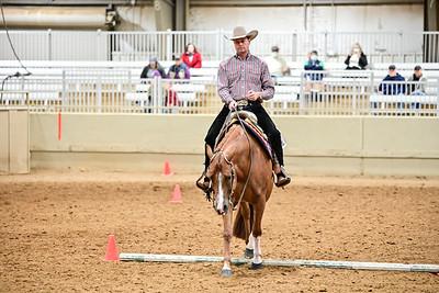 Novis Amature Western Riding