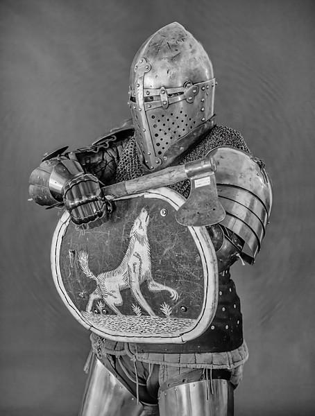 KnightinArmor_1_D852836.jpg