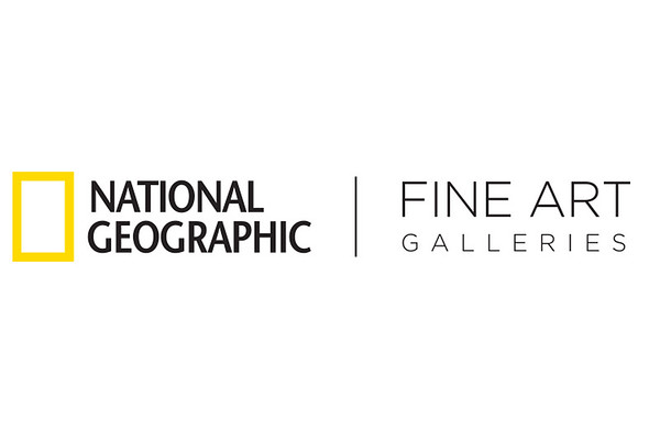 """""""Orangutan in The Rain"""" Available at National Geographic Fine Art Galleries"""
