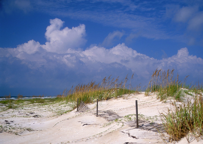 Beach at St. George Island