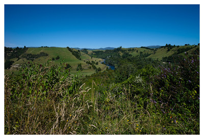 NZ 2013