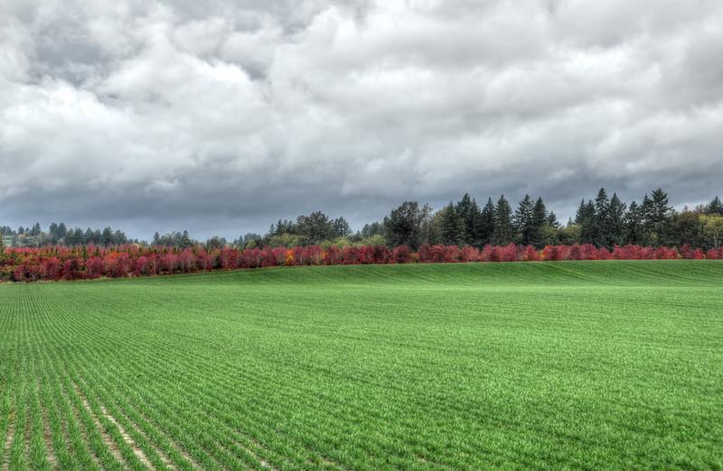 Portland suburb
