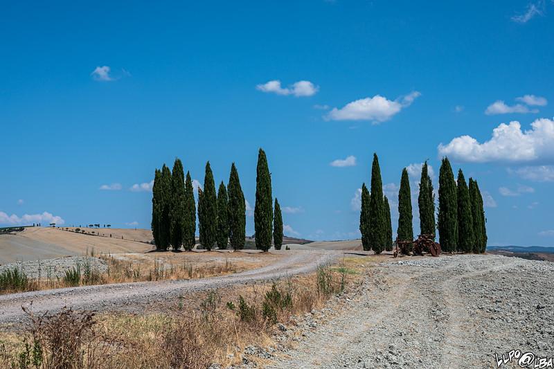 valdorcia-6528.jpg