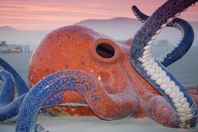 Octavius by Peter Hazel