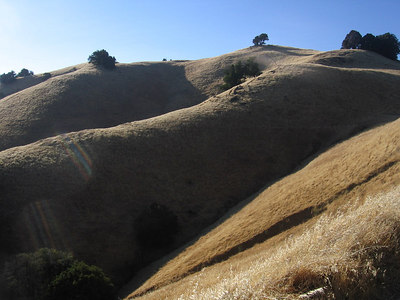 Mt. Tamalpais - July 31, 2006