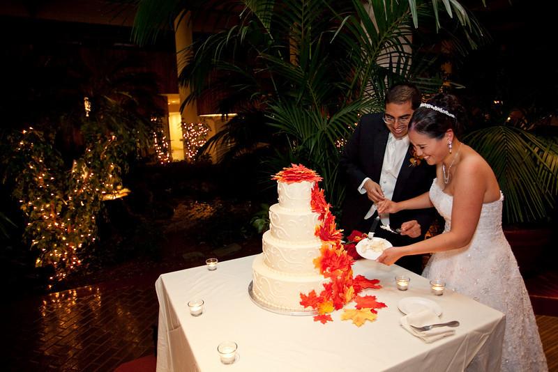 Emmalynne_Kaushik_Wedding-1208.jpg