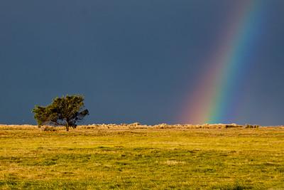 Part 4 - Landscape Photography