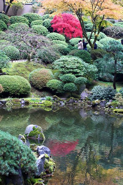 Portland Japanese Garden  11-11-11  3508.jpg