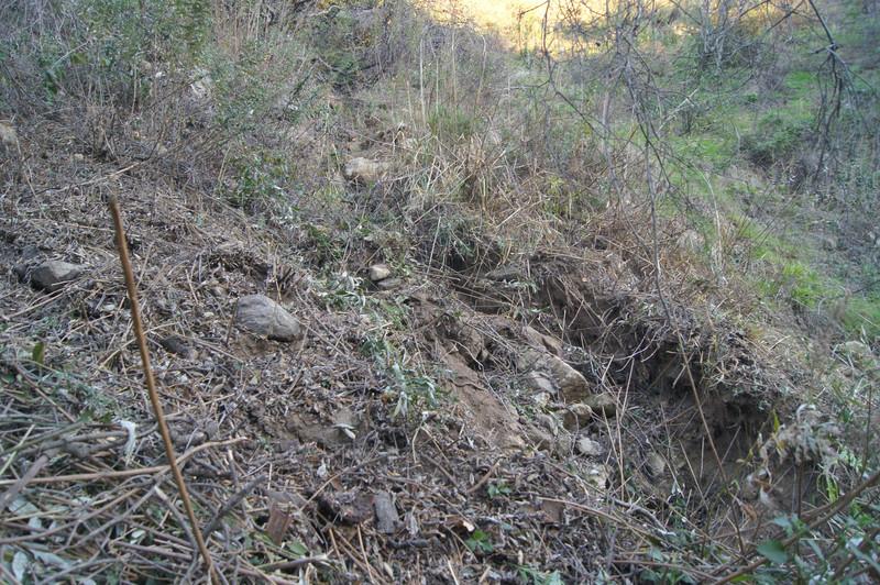 20120113010-El Prieto Trailwork Prep.jpg