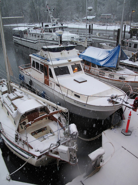 Langley Marina, Whidbey Island. March 22, 2013
