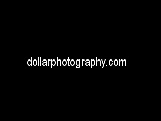 videos_dollarphotography