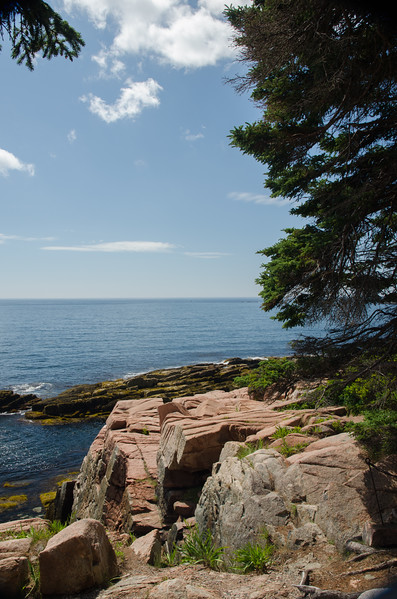Acadia Nat'l Park-Terry's - July 2017-511.jpg