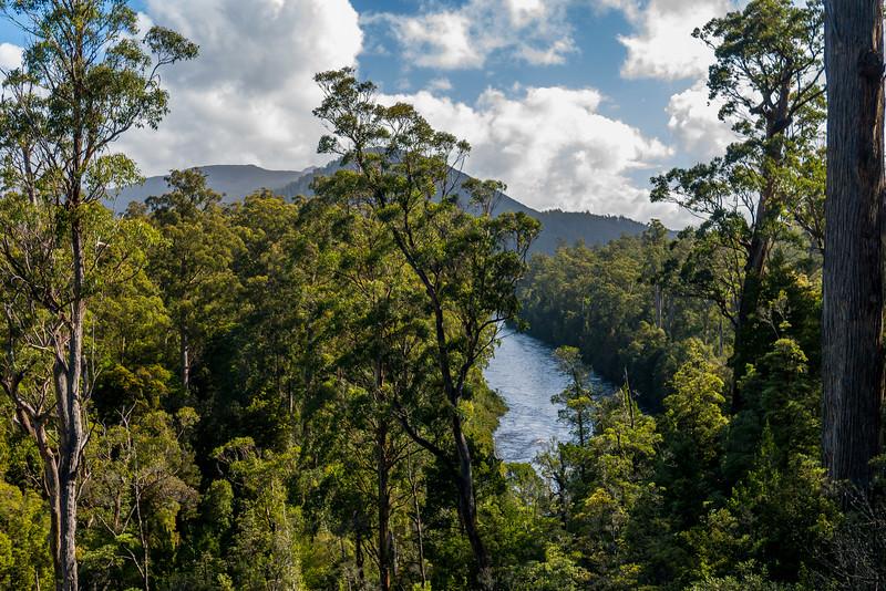 Tasmania-41.jpg