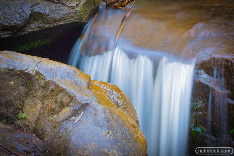 creek151010-219.jpg