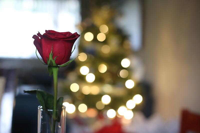 2019-12-22_ChristmasDecor-4452.JPG
