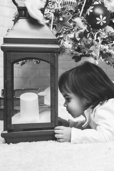 12.21.19 - Fernanda's Christmas Photo Session 2019 - -89.jpg