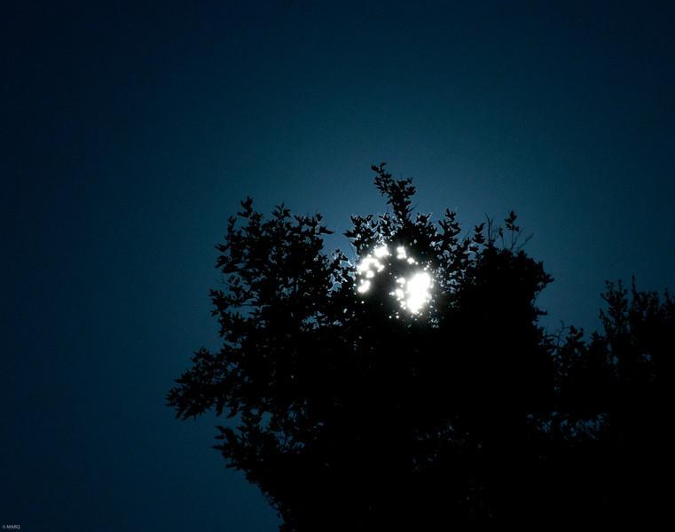 Black Star Canyon-8.jpg