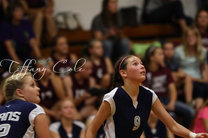 2015 MRJHS Volleyball