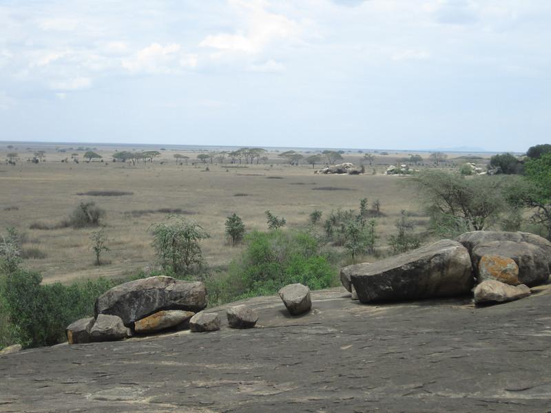 Tanzania14-3464.jpg