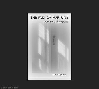 The Part of Fortune