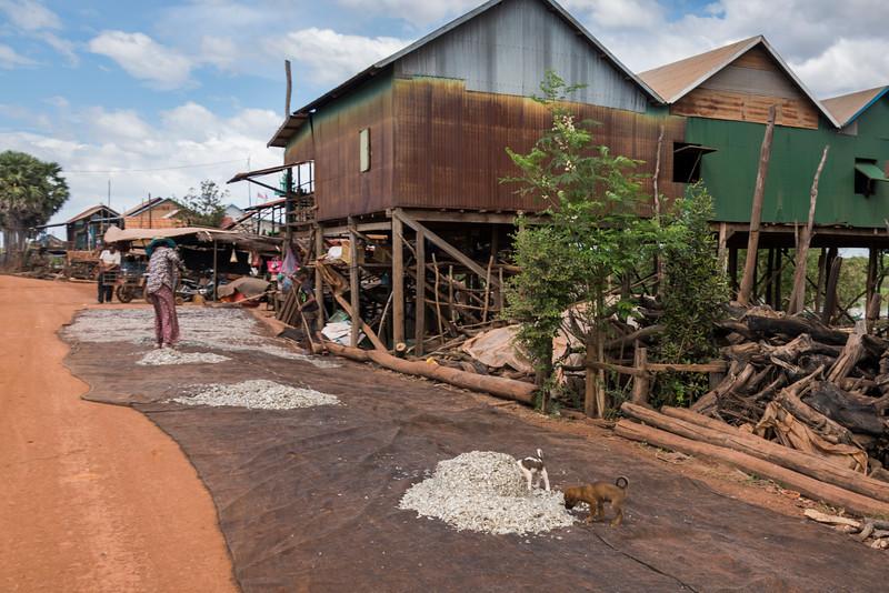 Stilt houses in village on Tonle Sap Lake, Kampong Phluk, Siem Reap, Cambodia
