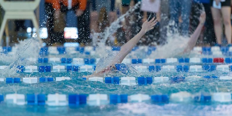 2018_KSMetz_Feb17_SHS Swimming_ State Finals_NIKON D5_5342.jpg