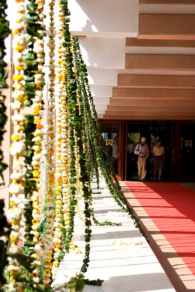 FLowers in front of Sheraton.jpg