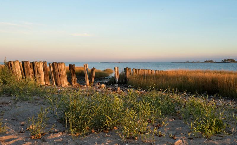 beach_0083.jpg