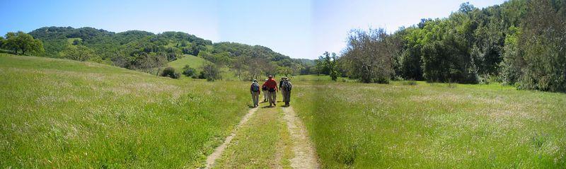 Henry Coe State Park Wildflower Hike