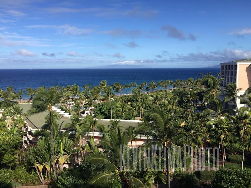 HawaiiPhonePics-364.JPG