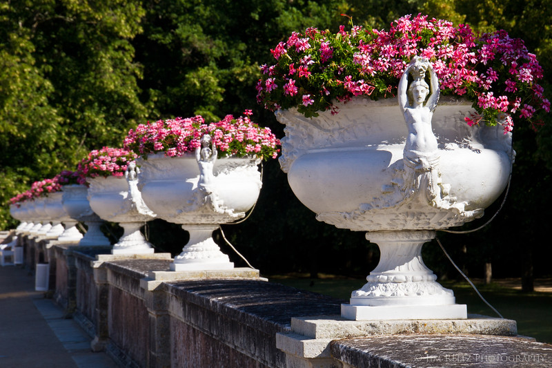 In the gardens of Chateau Chenonceau.