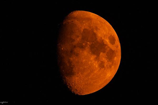 Dust Moon 2021
