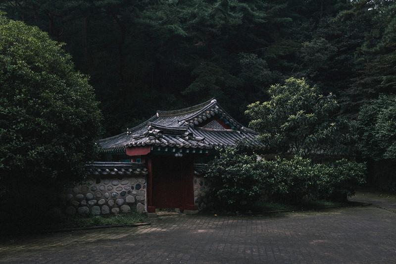 Korea_Insta-254.jpg