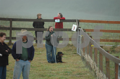 ABHCWW AKC Herding Trial 2006 Aug 18-20  Arlington  WA